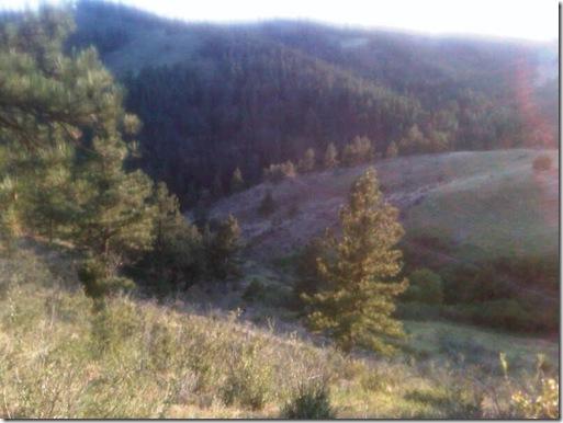 Trail.3