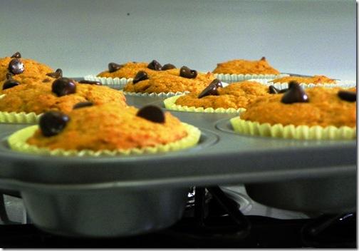 muffins 035