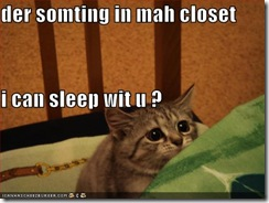 funny-pictures-scared-cat-asks-to-sleep-with-you