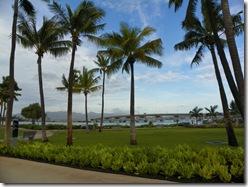 Oahu Hawaii 2011 106