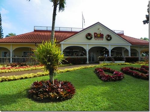 Oahu Hawaii 2011 166