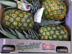 Oahu Hawaii 2011 176