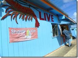 Oahu Hawaii 2011 213