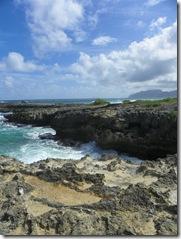Oahu Hawaii 2011 219