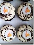 4.26 cupcakes