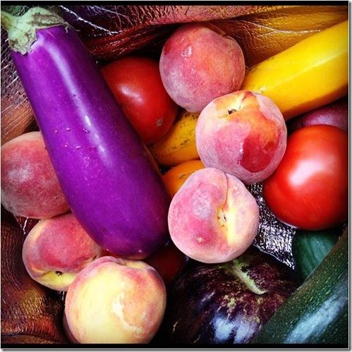 eggplant CSA