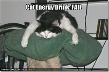 cat energy drink